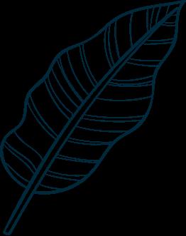 leaf_03